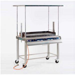 Gasbarbecue 110 x 50 cm + Reuzenbakplaat
